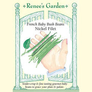 Bush Beans Nickel Filet - Renee's Garden
