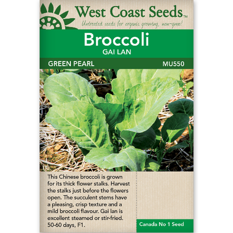 Broccoli Green Pearl - West Coast Seeds