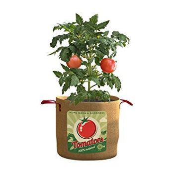 Vintage Grow Bag for Tomatoes