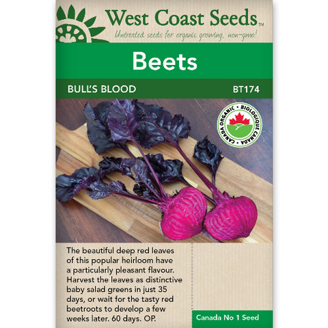 Beets Bull's Blood Organic - West Coast Seeds