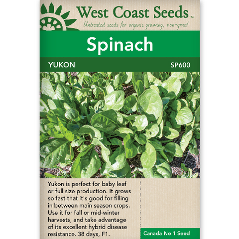 Spinach Yukon - West Coast Seeds