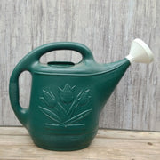 Green Watering Can - 2 Gallon