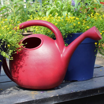 Warm Red Simply Elegant Watering Can - 2 Gallon