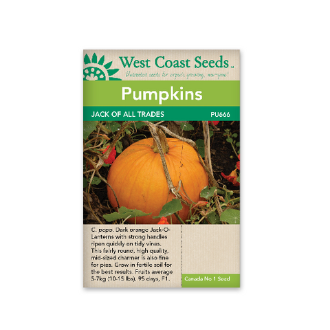 Pumpkin Jack Of All Trades - West Coast Seeds