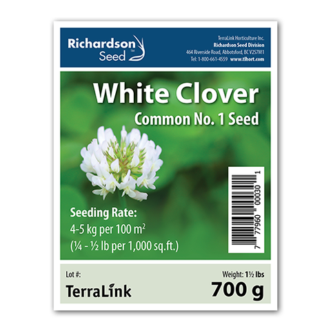 White Clover Lawn Companion Seed