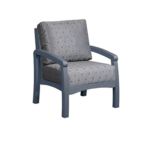 Arm Chair and Cushions - Premium - DSF161
