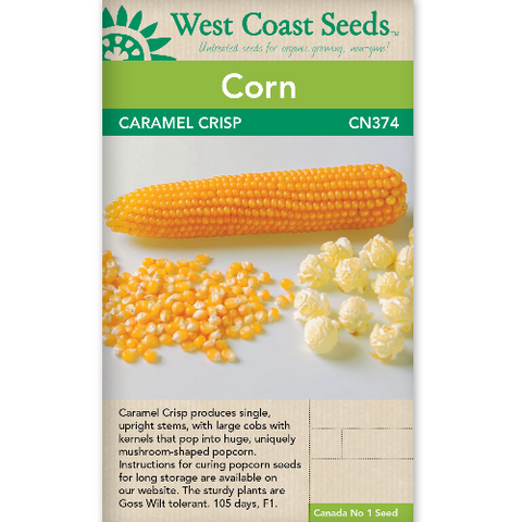 Corn Caramel Crisp - West Coast Seeds