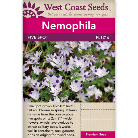 Nemophila Five Spot - West Coast Seeds