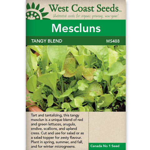 Mescluns Tangy Blend - West Coast Seeds