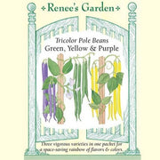 Pole Beans Tricolor - Renee's Garden Seeds