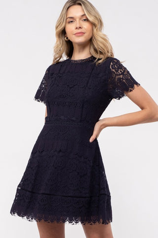 Navy Lace with Scallops