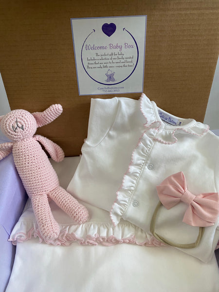 welcome baby box, newborn baby gift, baby girl, baby box,