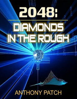 2048: Diamonds in the Rough eBook (ePub)