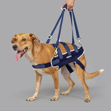 Balto® Body Lift – Body Harness with Handles