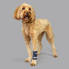 Balto® Joint – Carpal Compression Band