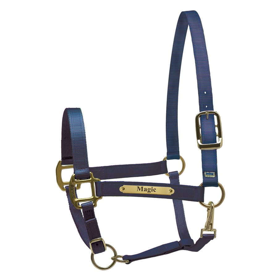 Perri's Leather Nylon Super Halter with Plate