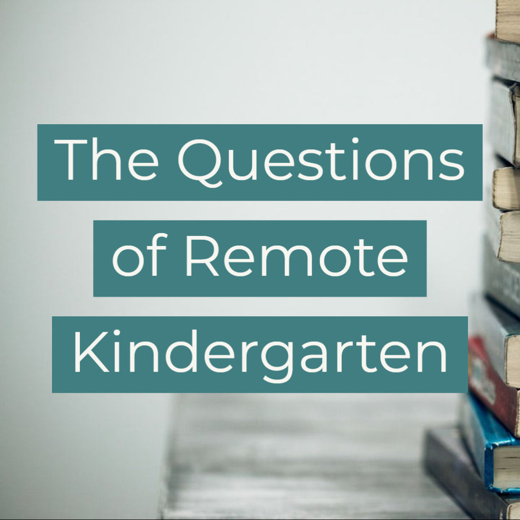 The Questions of Remote Kindergarten