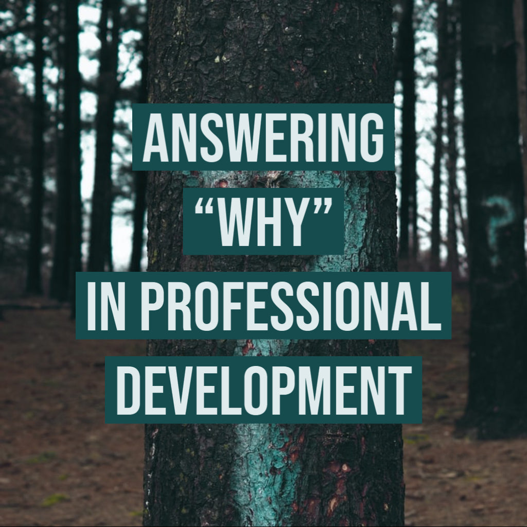 "Answering ""Why"" in Professional Development"