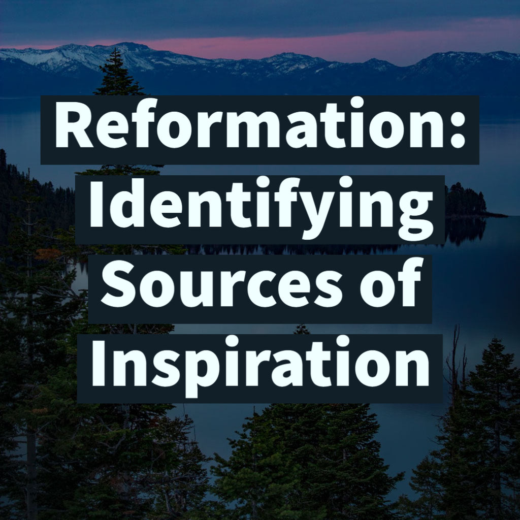 Reformation: Identifying Sources of Inspiration