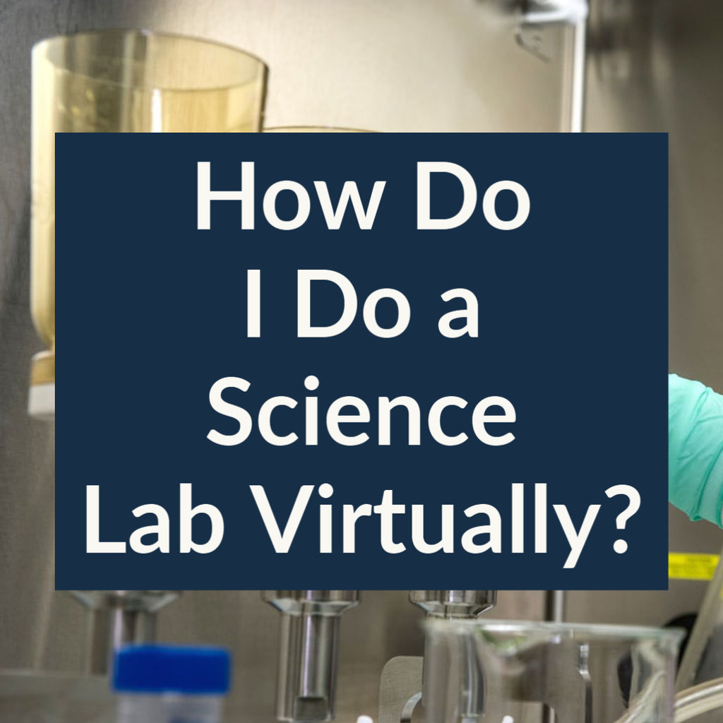 How Do I Do a Science Lab Virtually?