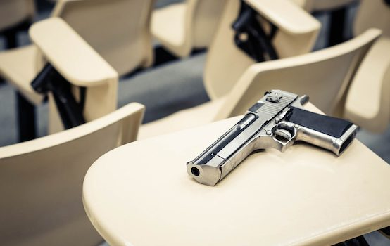 Why We Can't Have Guns in Schools