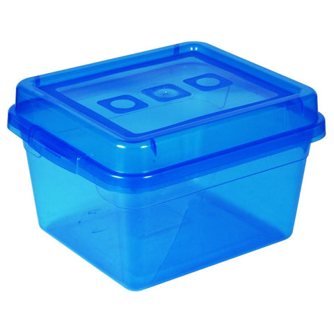 Reclosable Plastic Storage Bin With Lid - Fits 50 Bagged Earbuds
