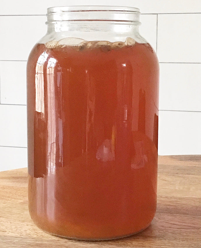 Yeast in Kombucha - 3 Things you Should Know