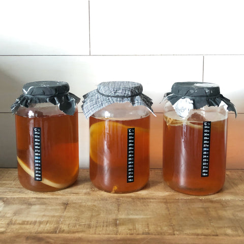 Three jars of kombucha that brewed too long and what to do with the liquid by YEABUCHA.
