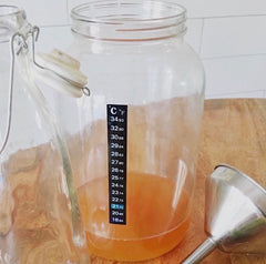 YEABUCHA tips on how to add more carbonation to your kombucha home brew.