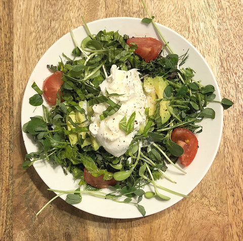 burrata caprese salad with italian herb kombucha vinegar