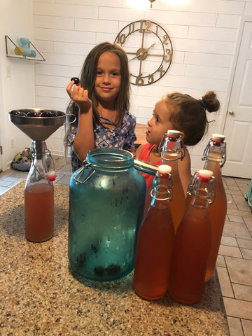 YEABUCHA Kombucha F2 Flavor Recipes Ginger Mint