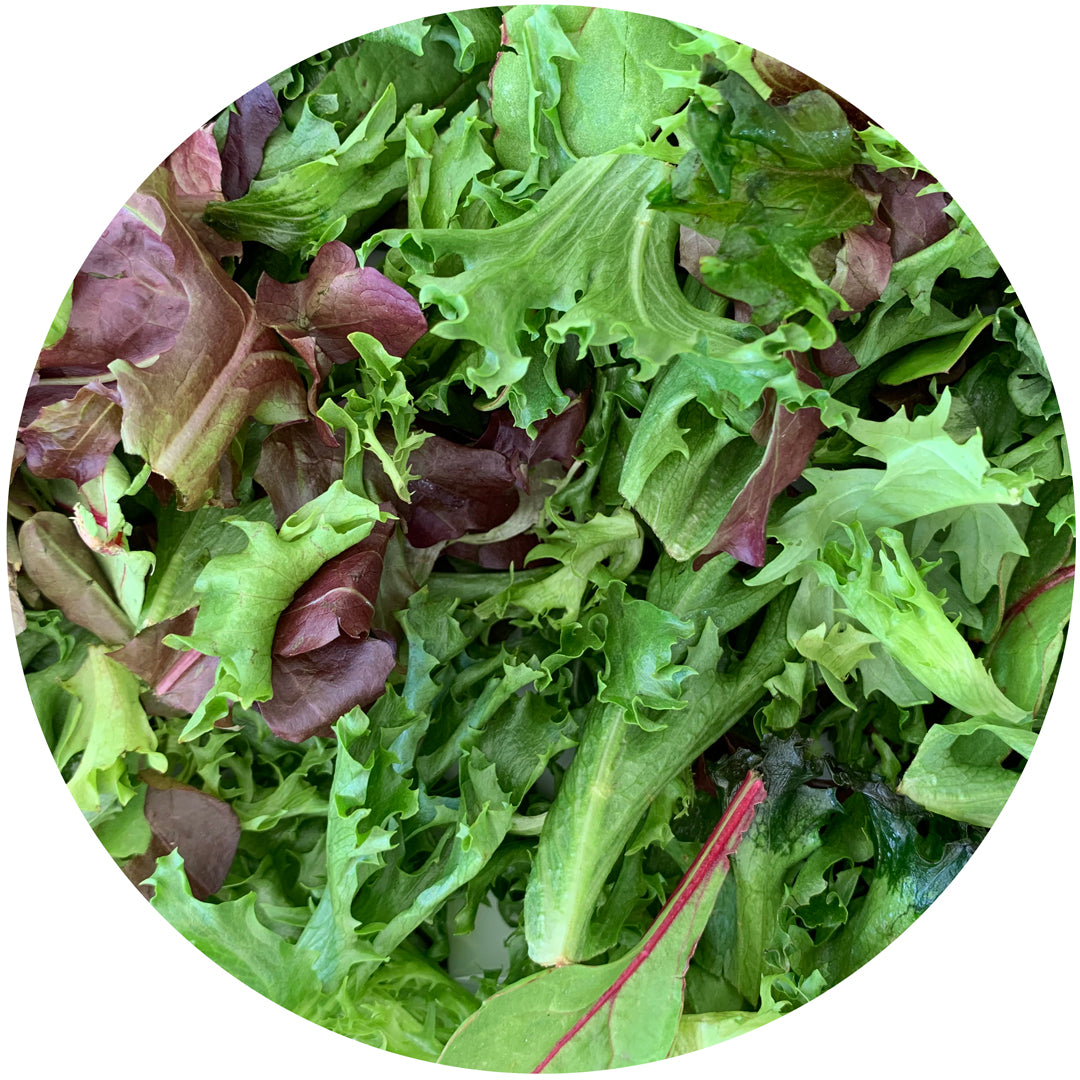 Mesculn Salad Greens