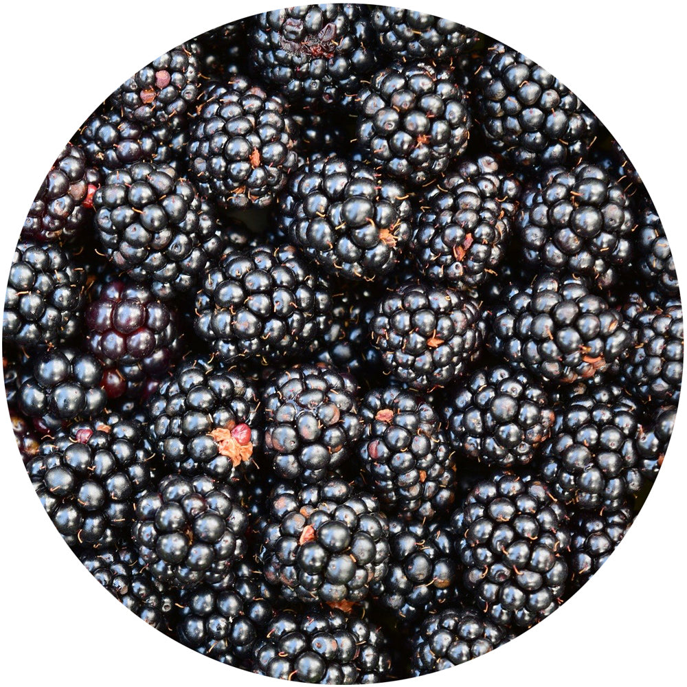 Fresh<br>Blackberries