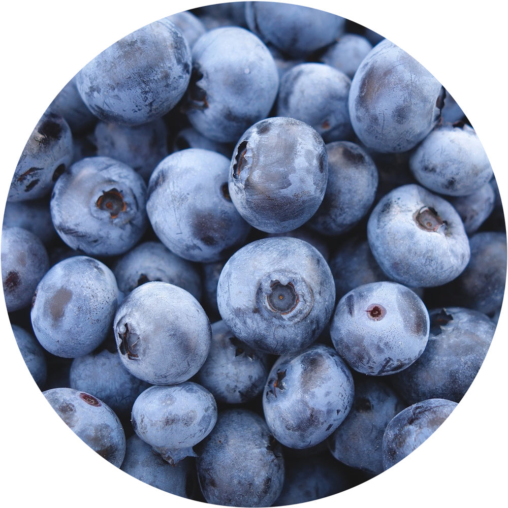 Fresh<br>Blueberries