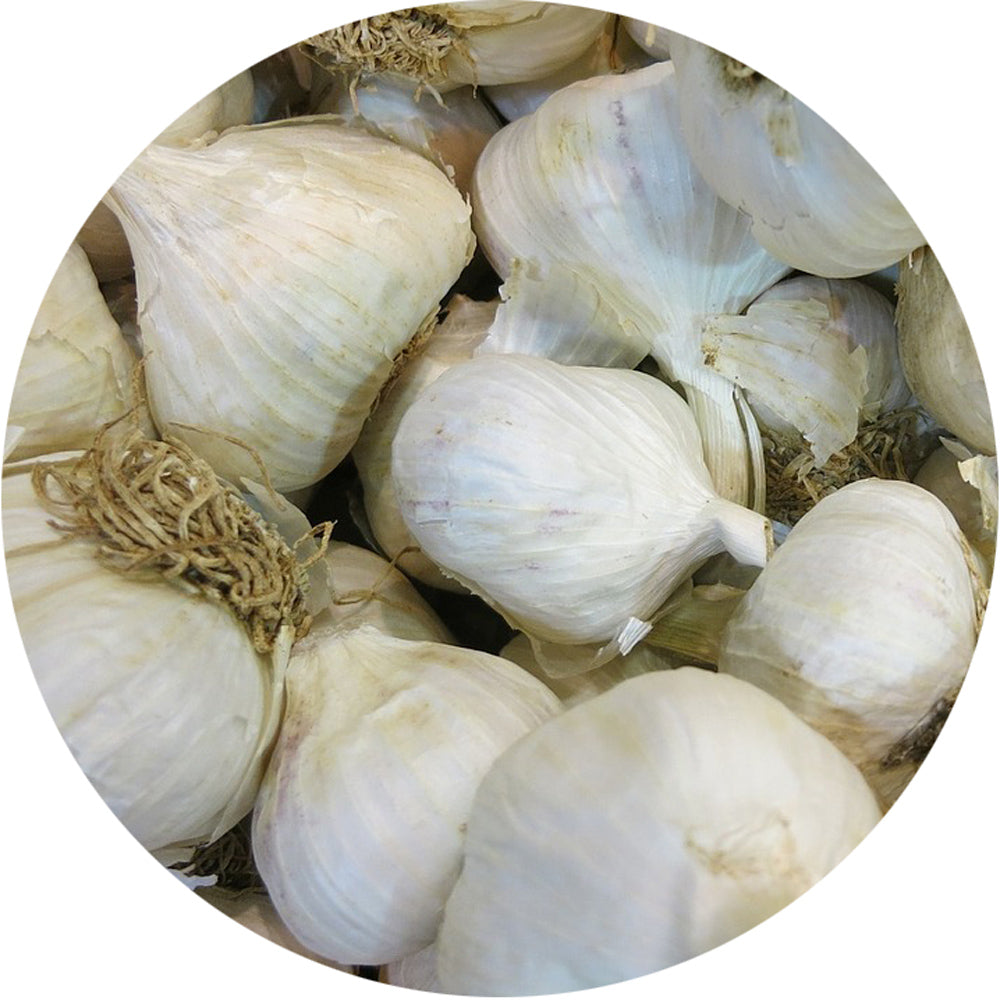 Whole Garlic<br>Unpeeled