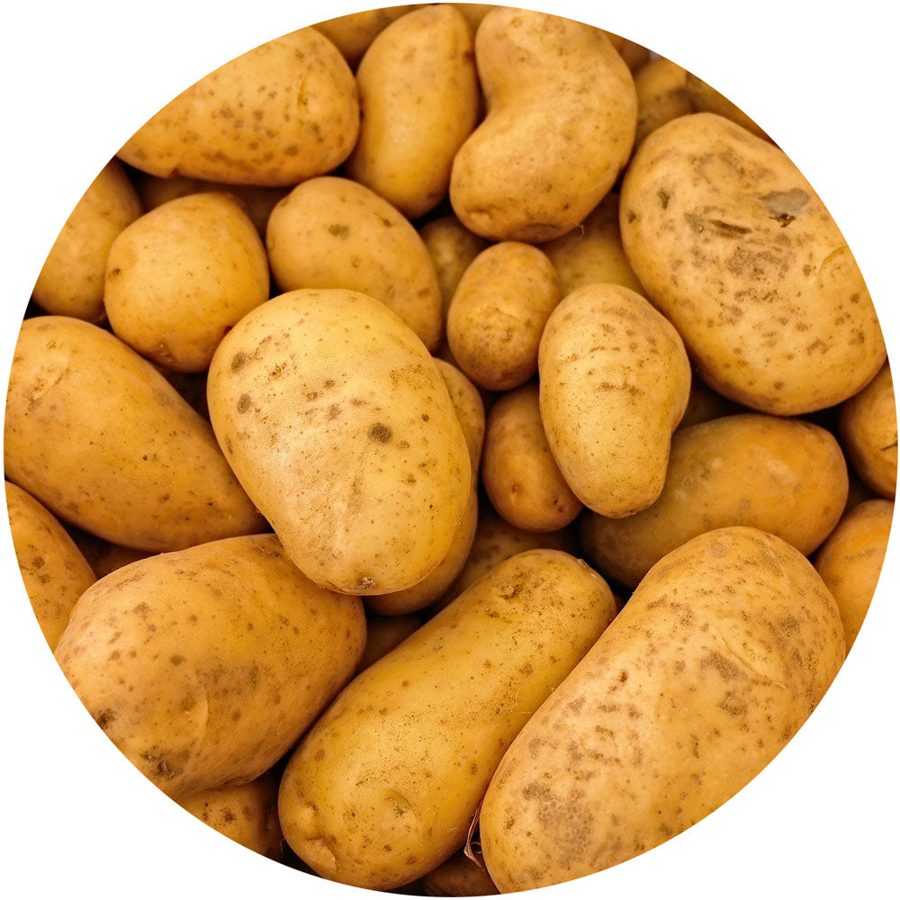 Yukon Gold<br>Potatoes