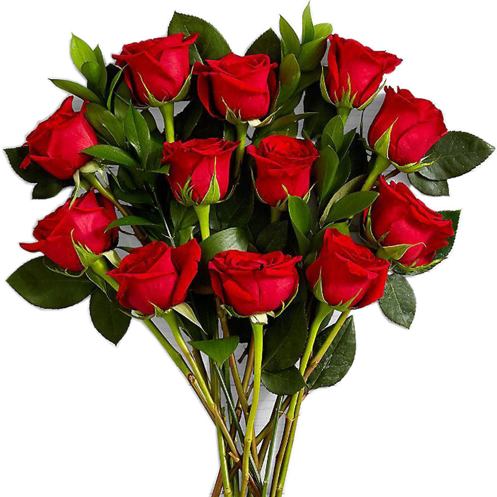 Red Roses<br>Long Stem