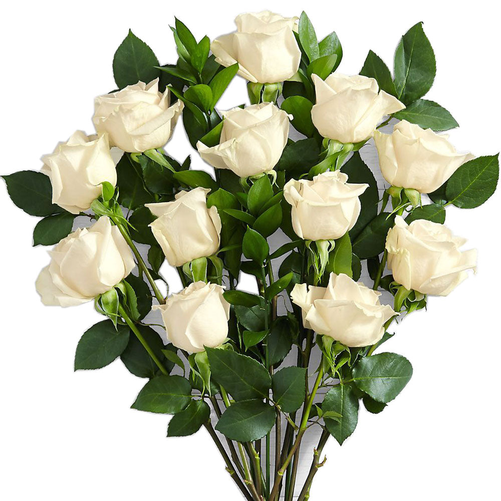 White Roses<br>Long Stem