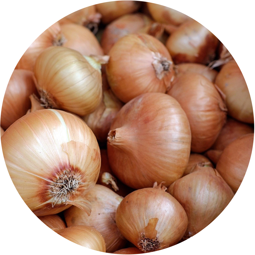Yellow<br>Onions