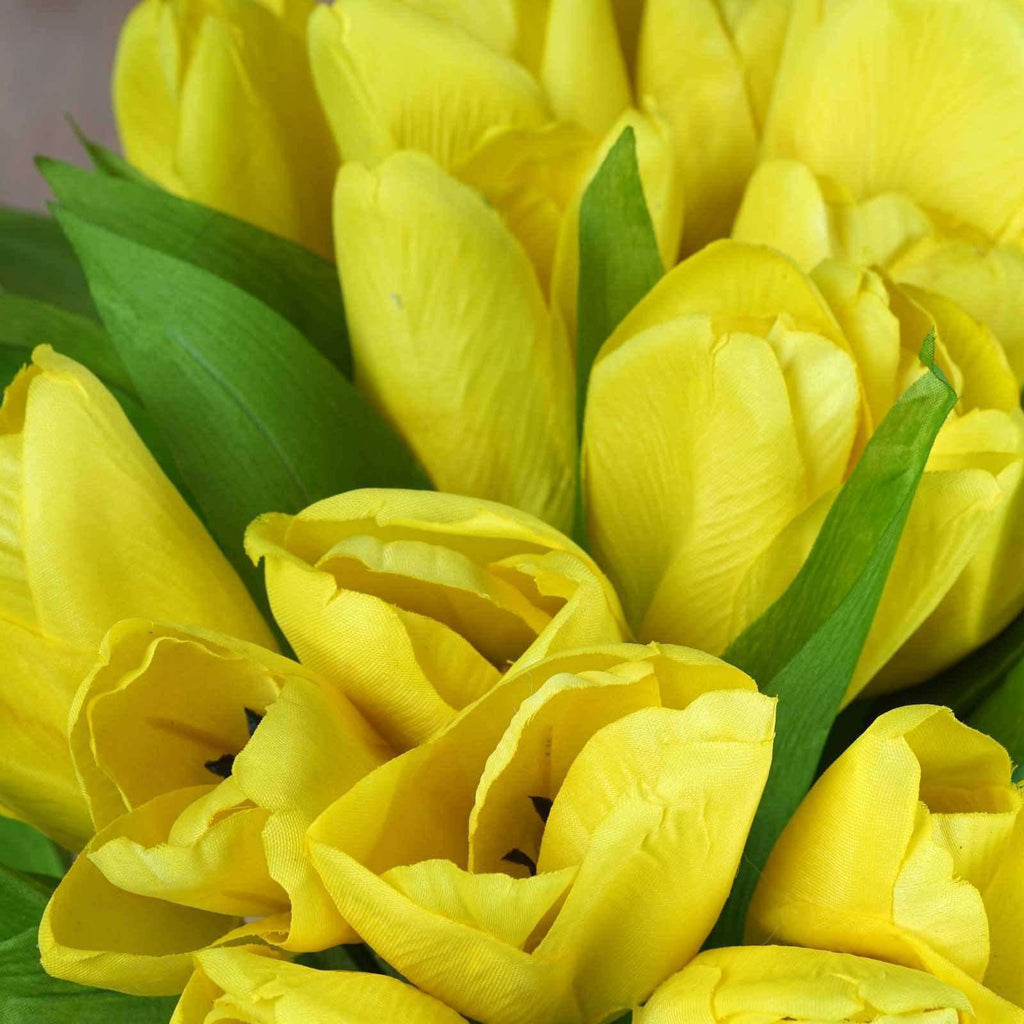 56 Tulip Flowers - Yellow