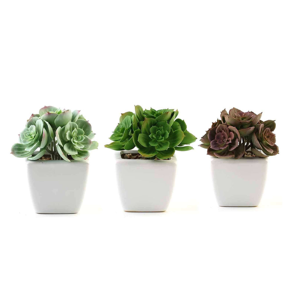 Set of 3 | 5'' Assorted Mini Echeveria Artificial Faux Succulent Air Plants in Ceramic Pot with Decorative Rocks