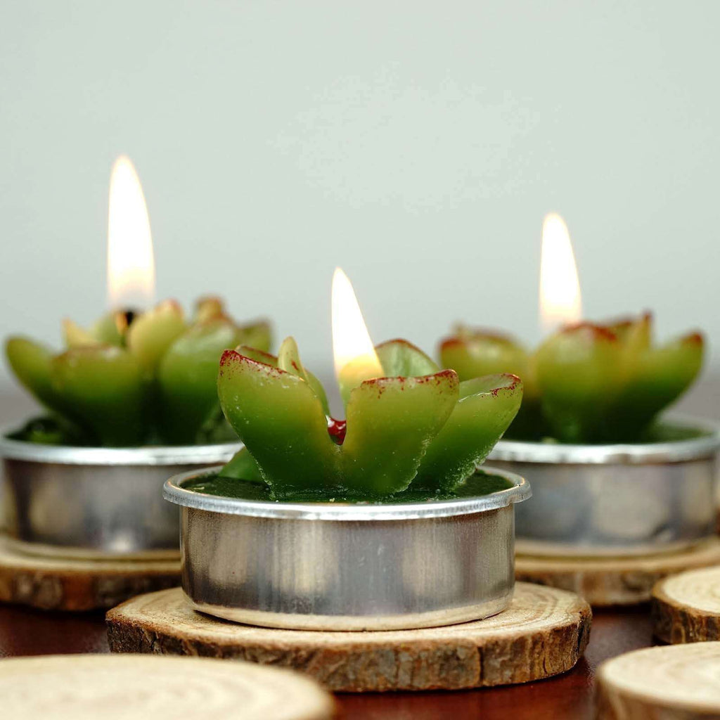 Succulent Tea Light Candles - 6/pk - Green