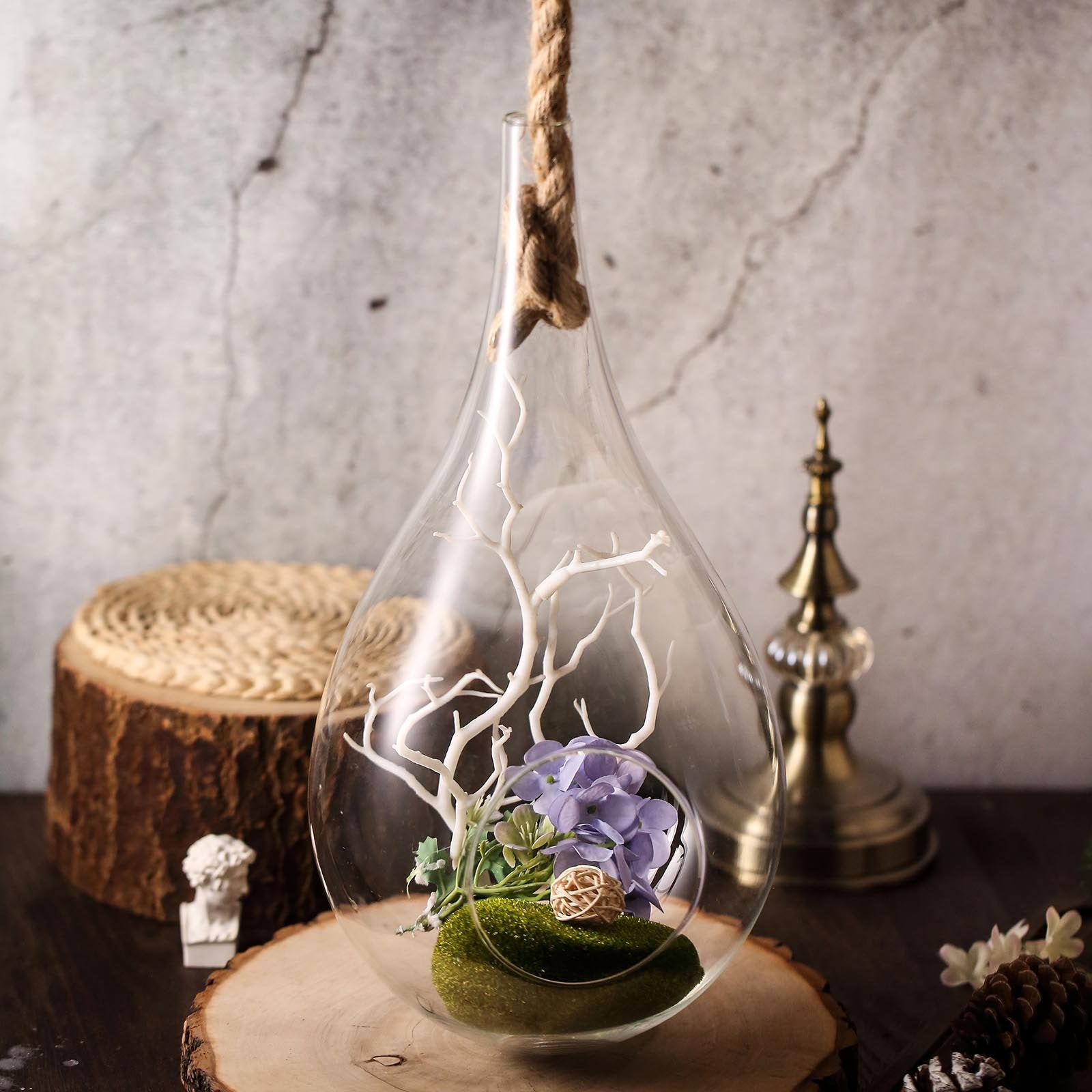15 Teardrop Hanging Glass Terrarium With Rope Air Plant Terrarium Chaircoverfactory