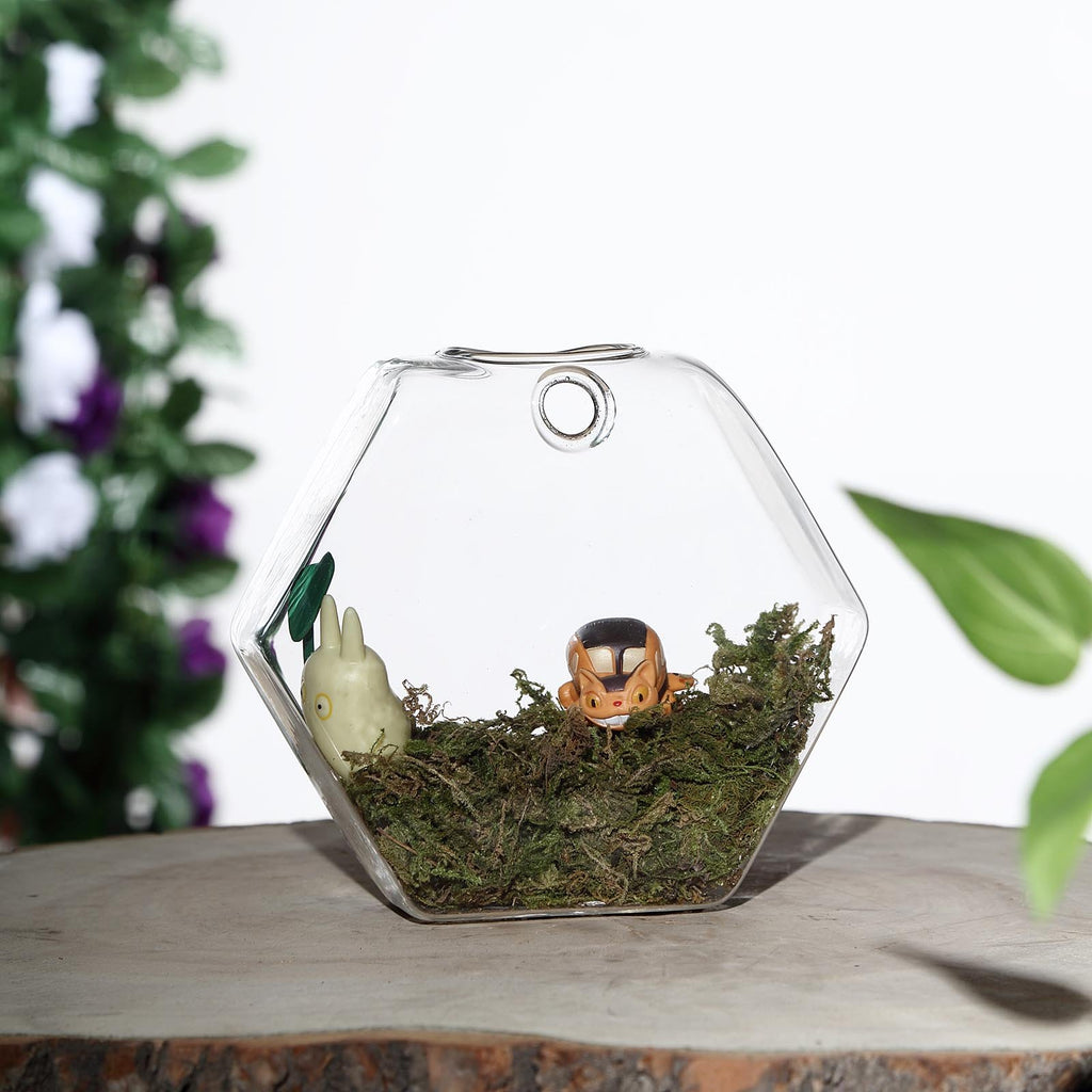 Set of 3 | Clear Hexagon Shaped Glass Hanging Vases | Wall Mounted Terrariums