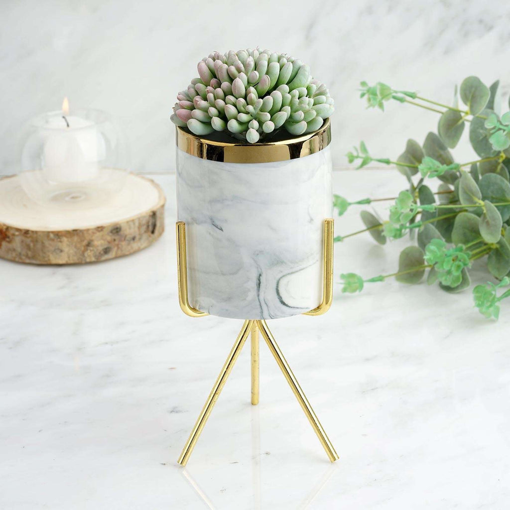 "8"" Grey 