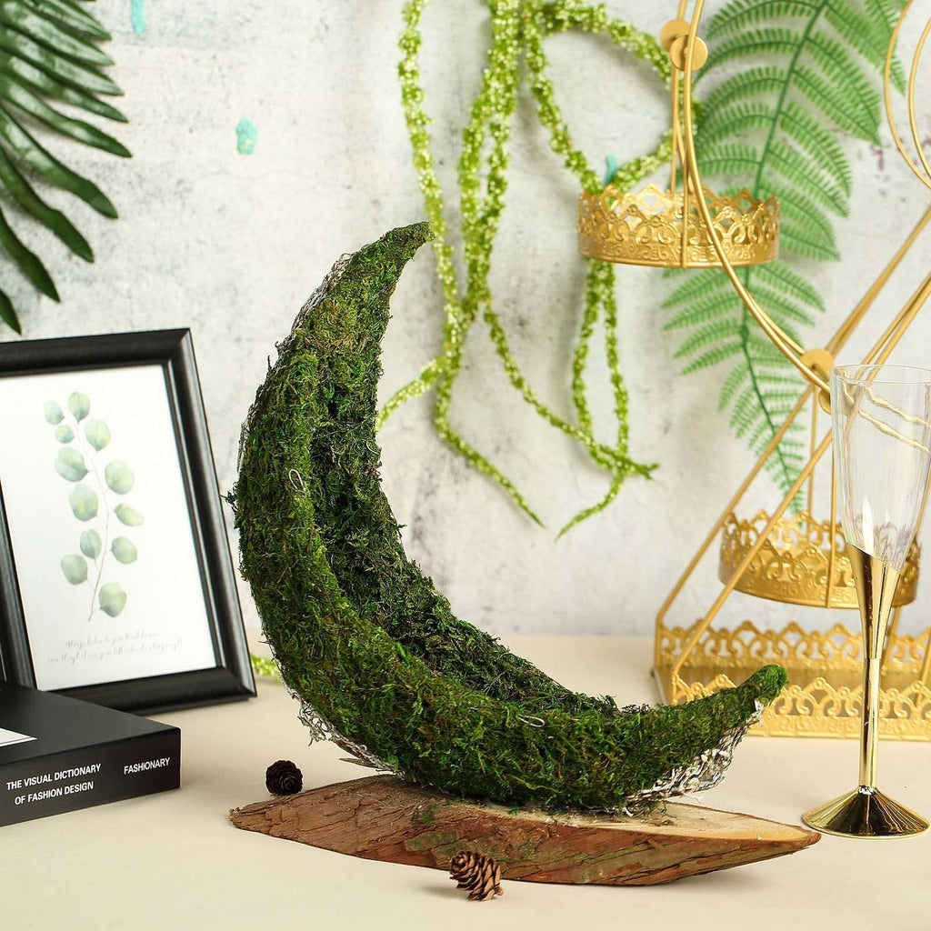"13"" Crescent Half Moon Preserved Natural Moss Centerpiece With Wooden Slab"