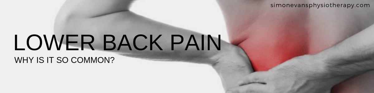Lower Back Pain Physiotherapy Solihull Simon Evans