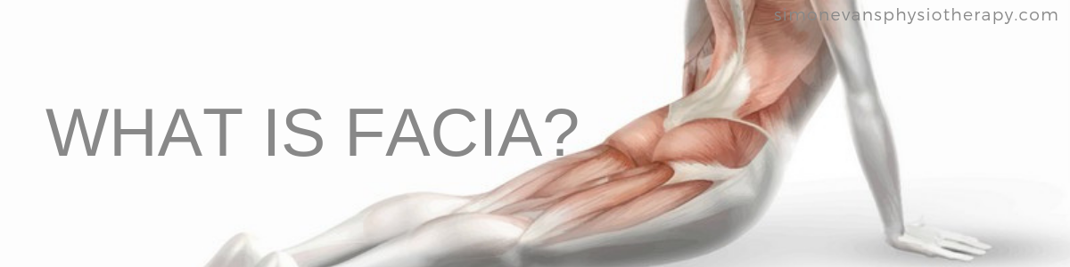 What is Facia Simon Evans Physiotherapy Solihull