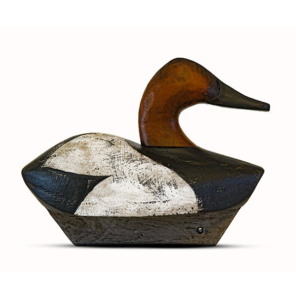 Signature Series Marsh Canvasback