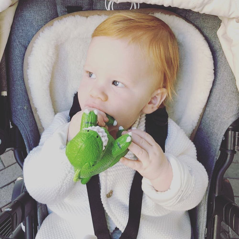 My First T-Rex Teether
